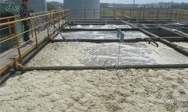 皮革污水处理器